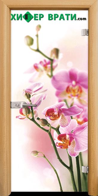 Стъклена интериорна врата модел Print G 13-2, каса Светъл дъб