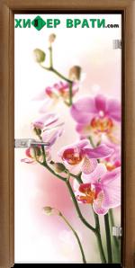 Стъклена интериорна врата модел Print G 13-2, каса Златен дъб