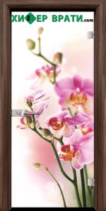 Стъклена интериорна врата модел Print G 13-2, каса Орех