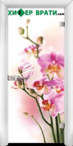 Стъклена интериорна врата модел Print G 13-2, каса Бяла
