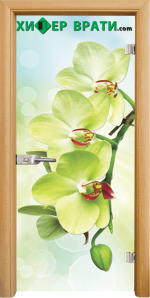 Стъклена интериорна врата модел Print G 13-3, каса Светъл дъб