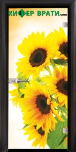 Стъклена интериорна врата модел Print G 13-4, каса Венге