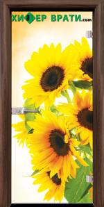 Стъклена интериорна врата модел Print G 13-4, каса Орех