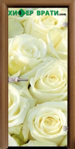 Стъклена интериорна врата модел Print G 13-6, каса Златен дъб